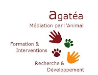 https://sites.google.com/a/corps-et-anes.fr/www/intervenant-en-mediation-animale/imageOOP.jpg?attredirects=0